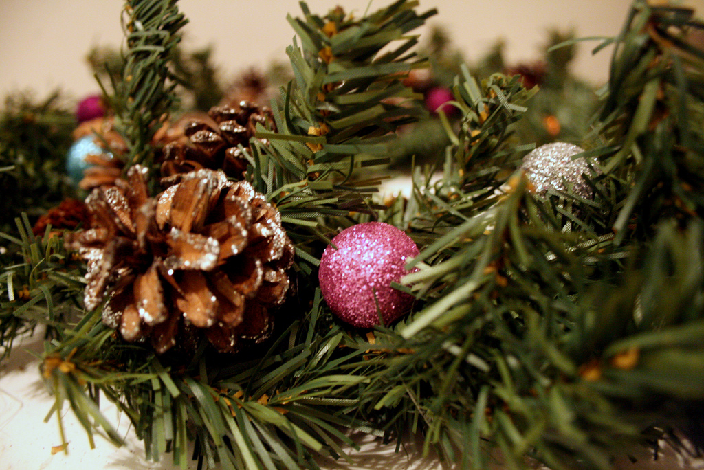Pinecones are ideal for rustic wreaths - © theogeo - Flickr