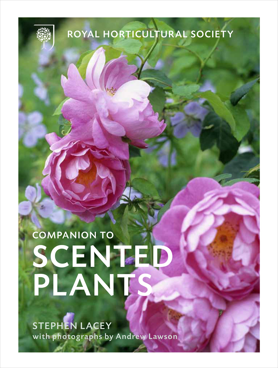 RHS Companion to Scented Plants lr