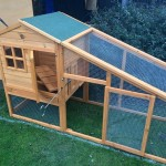 A Chicken Coop for all Occasions