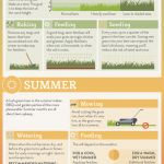 A Seasonal Lawn Care Cheat Sheet