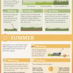 A Seasonal Lawn Care Cheat Sheet
