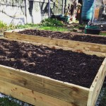 How to Make a No-Dig, Raised Bed