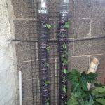 Vertical Gardening with Recycled Plastic Bottles