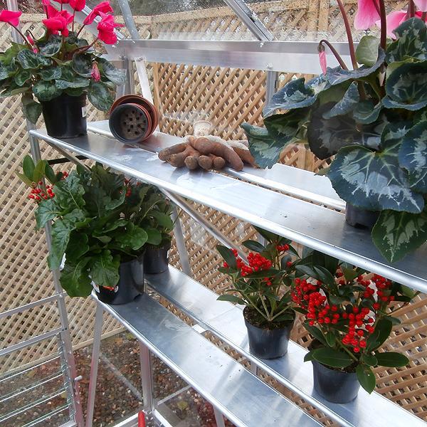 small greenhouse gardening